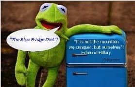 blue fridge.jpg