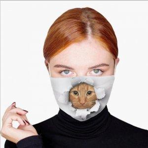cat-face-mask-z.jpg
