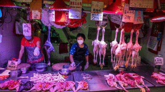 wuhan market.jpg