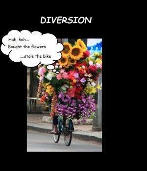 DIVERSION.jpg