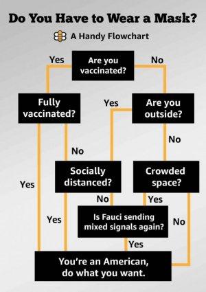 vaccine mask covid meme.jpg