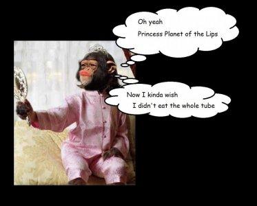 monkey mirror 3.jpg