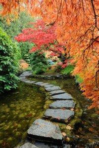 22-japanese-garden.jpg