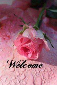 welcomerose.jpg
