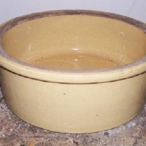 yellow bowl1.jpg